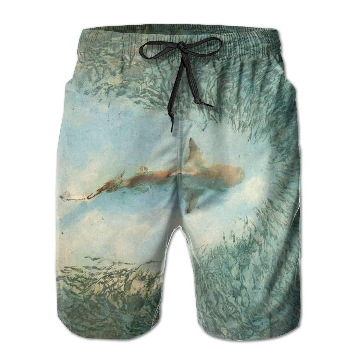 One Shark and Numerous Fish Men/'s Beach Board Shorts Quick Dry Swim Truck Shorts