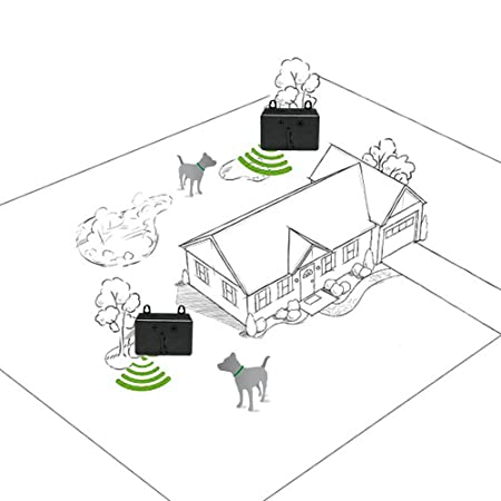 amazon zelers new upgrade model device anti barking training Cat Respiratory System Diagram amazon zelers new upgrade model device anti barking training tool safe deterrent silencer for yard outdoor sonic control for small medium large