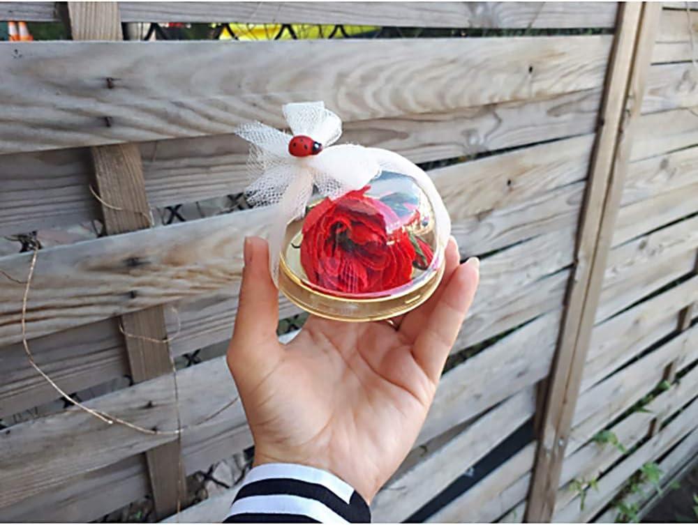 Gold Chenny 50Sets durchsichtiger Kunststoff Mini-Tortenschachtel-Kuchen-Verpackung Box Egg Mooncake Boxen Yolk Puff Box Weihnachten Hochzeitsfestbevorzugung