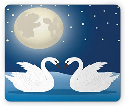 Swans By Moonlight >> Amazon Com Ambesonne Swans Mouse Pad Romantic Moonlight Sky View