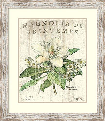(Framed Art Print, Magnolia de Printemps' by Sue Schlabach: Outer Size 20 x 23)