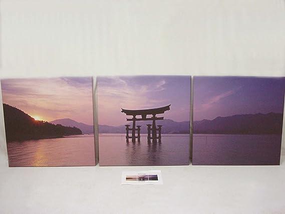 Desconocido Set 3 Cuadros Plotter Canvas Madera Mediano Paisaje Oriental MAR MONTAÑA Variado: Amazon.es: Hogar