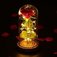 LEDMOMO Rose rouge de soie et lumière de LED avec des pétales tombés dans un dôme de verre sur une base en bois Cadeau pour le mariage d'anniversaire d'anniversaire de la Saint-Valentin (rose simple)
