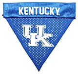 Pet Goods NCAA Kentucky Wildcats Collar Bandana, One Size