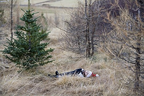 Boy with santa hat. Iceland. 30x40 photo reprint by PickYourImage