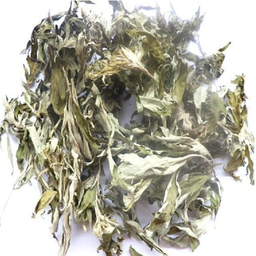 Pure Sagebrush Natural Tea Beauty Tea Soaking Feet/for Bath 250g