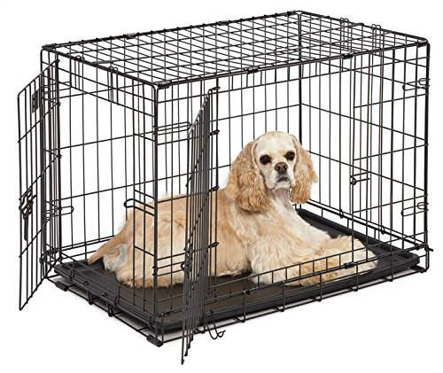 MidWest 30' iCrate Double Door Folding Metal Dog Crate w/ Divider Panel, Floor Protecting 'Roller' Feet & Leak-Proof Plastic Tray; 30L x 19W x 21H Inches, Medium Dog Breed