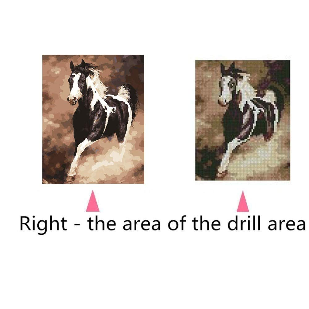 MOTOCO Full Drill DIY 5D Diamond Painting Embroidery Cross Crafts Stitch Kit Home Decor A:Parrot