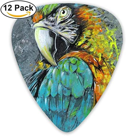 Black Pink Poll Parrot Bird Acoustic Guitar Picks 12 Packs: Amazon.es: Instrumentos musicales