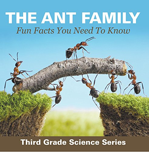 The Ant Family - Fun Facts You Need To Know : Third Grade Science Series: Ants for Kids - Habitats (Children's Zoology Books) -