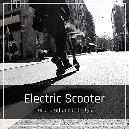 durable service TecTecTec TPRO1+ Trottinette électrique Ultra Légère - Trottinette Portable Electrique avec Batterie et Cadre Carbone
