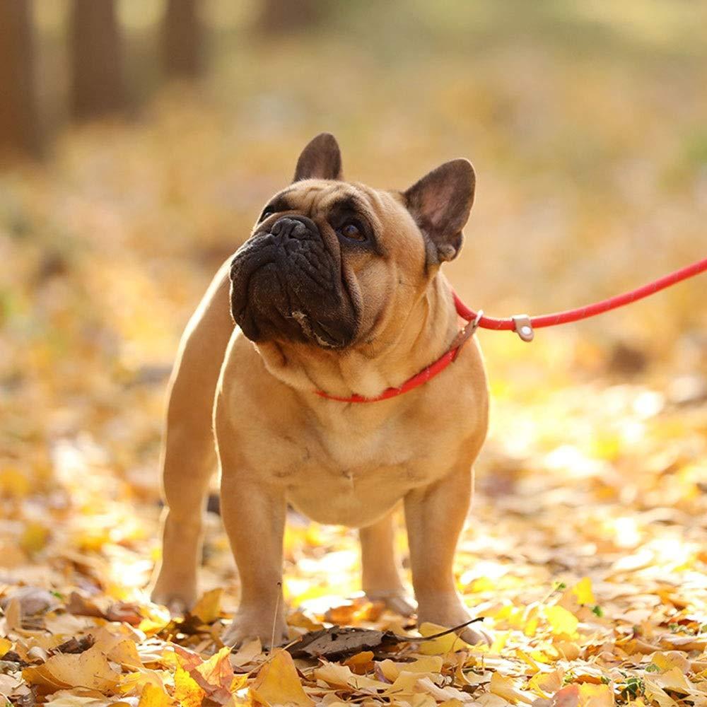 Red M Red M AUSWIEI Pet Leash Dog Dog Leash Nylon Pet Leash (color   Red, Size   M)