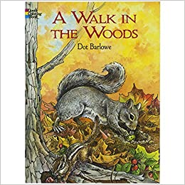 a walk in the woods dover nature coloring book dot barlowe coloring books 0499991631698 amazoncom books - Nature Coloring Book