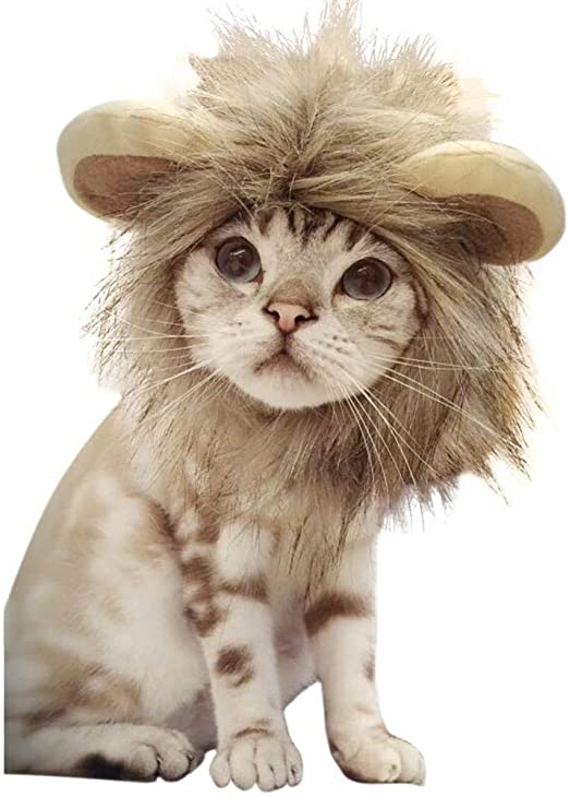 WINNER POP Tocado para Mascotas de Halloween, Peluca de Melena de león, Cabello de león cómodo, Lavable y Ajustable, Adecuado para Decorar la Fiesta de Navidad, 2 Piezas: Amazon.es: Productos para mascotas