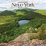 New York Wild & Scenic 2020 12 x 12 Inch Monthly Square Wall Calendar, USA United States of America Northeast State Nature (English, Spanish and French Edition)