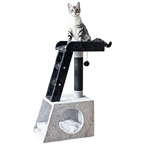 Amazon.com: Catry - Árbol para gatos con escalera de 31 ...