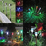 Solar LED Landscape Lights for Outdoor Path - Colorful Sun Powered Yard Lights For Garden, Ground Path, Walkway, & Driveway, 10 Pack