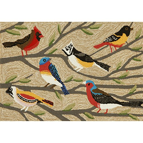 Liora Manne FT123A50744 Whimsy Resting Birds Rug, Indoor/Out