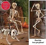 Spooky Posable Skeleton Halloween Décor, 4-ft Tall