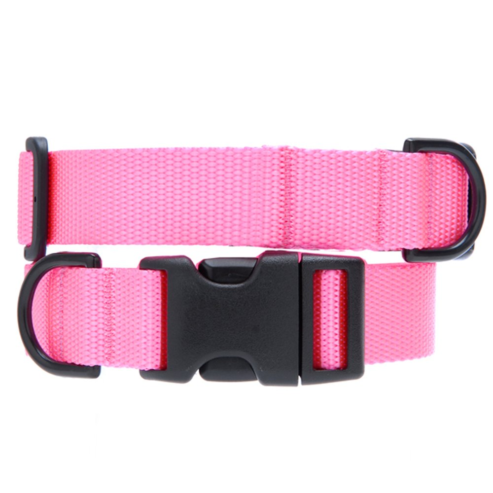 Max & Zoey 1-Inch Wide Basic Dog Collar, X-Small, Pink