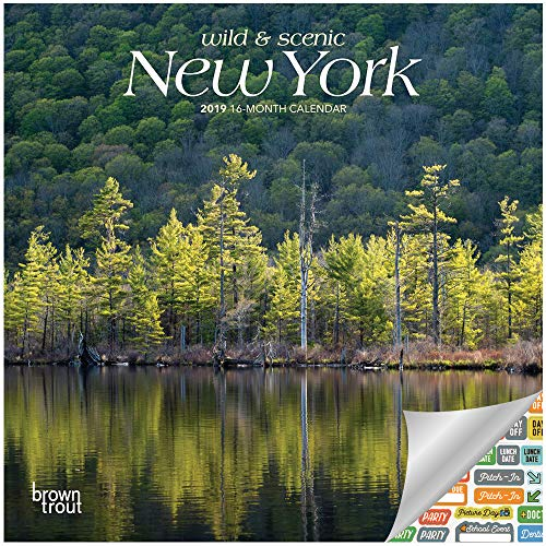 New York Wild & Scenic Calendar 2019 Set - Deluxe 2019 New York Mini Wall Calendar with Over 100 Calendar Stickers (New York Gifts, Office Supplies)