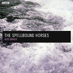 The Spellbound Horses Radio/TV Program