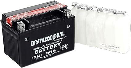 Dynavolt YTX20-ABS - Batería para congelador: Amazon.es: Coche y moto