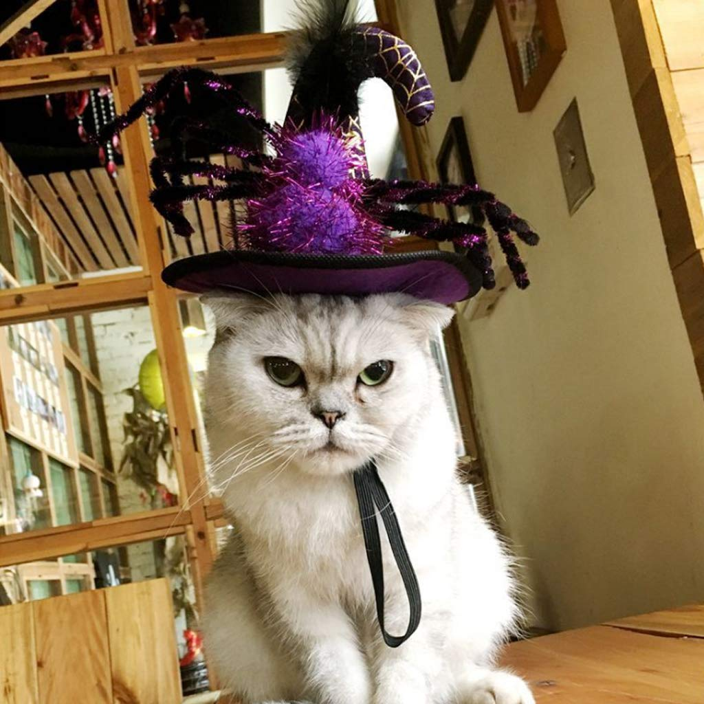 EcLife - Gorro de Navidad para Mascota, Gato, Cachorro, Diadema ...