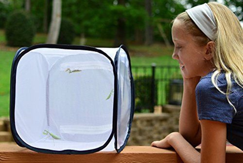 Collapsible Insect and Butterfly Cage Insect & Butterfly Habitat Terrarium Pop-up Butterfly Net (12x12x12 inches) (Black)