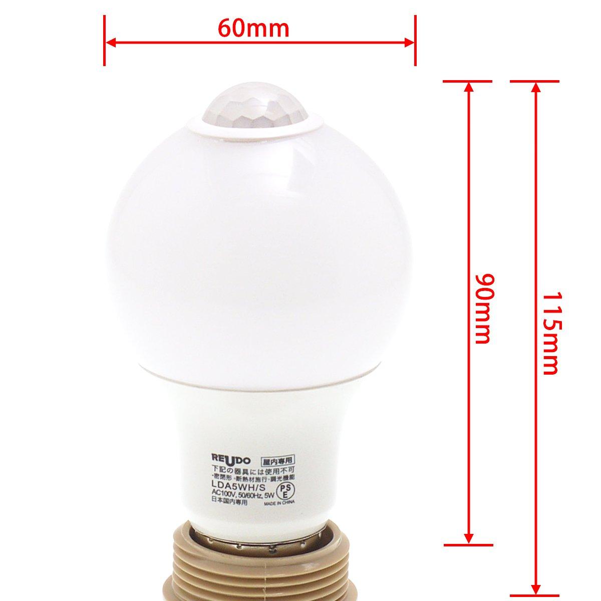 電球の大きさ
