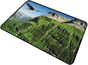 DESPKON Floor Mat Wild Majestic Bird Flying Great Landscapes Green Mountains Forest Nature Image Premium Durable Door Mat 100% All Natural Fibers - Eco-Friendly Green Blue Black 16 x 24 Inch