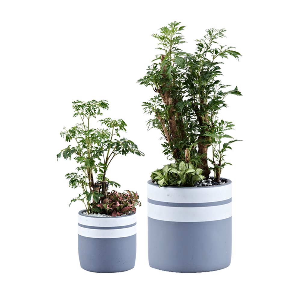 Cement Flower Pots, Pack 2 Garden Planter Pots Outdoor/Indoor, Plant Containers with Drainage Hole and Tray, White and Grey Detailing by UTOKIA
