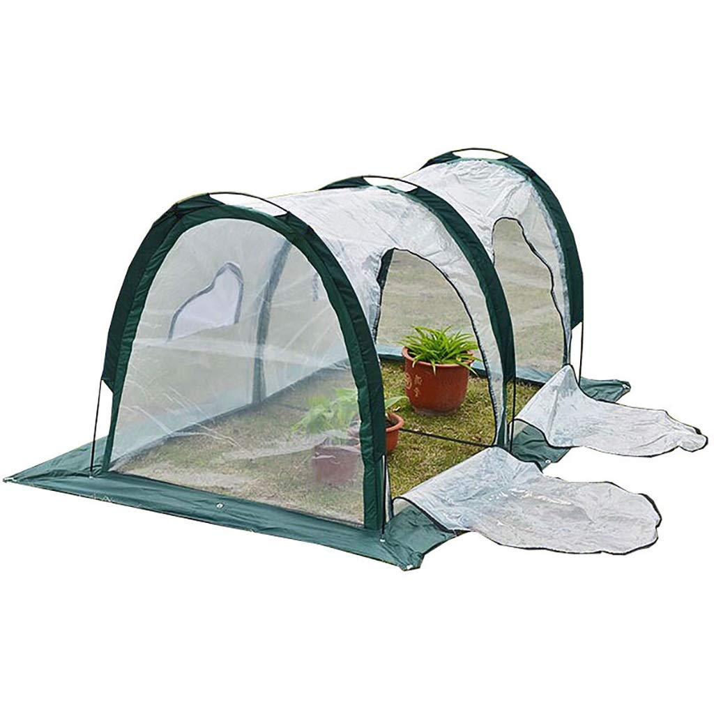 LIZIWS Greenhouse flower house plant germination equipment 2mPE ramp transparent 2 door 2 window anti-freezing steel frame