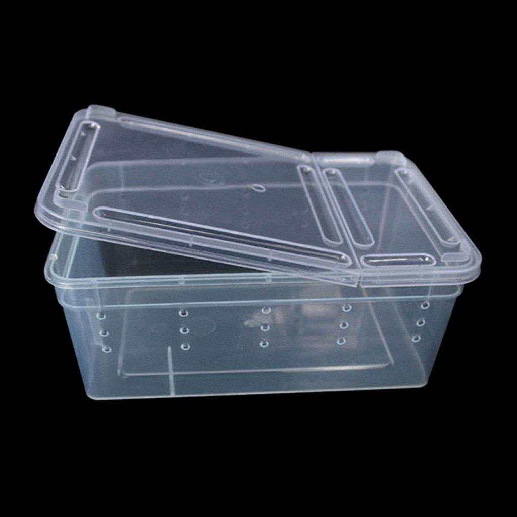 Jiamins Boîte en Plastique Transparente Couvercle, Terrarium d'alimentation élevage de Reptiles, Boîte de déménagement Insectes Reptiles