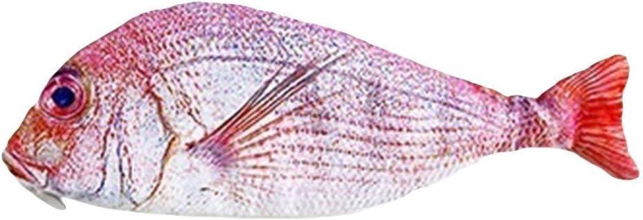 Chusea - Estuche para lápices con Forma de pez: Amazon.es: Juguetes y juegos