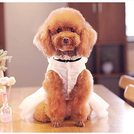 Vestido de Novia de Encaje Princesa Vestidos de Novia, para Perro ...