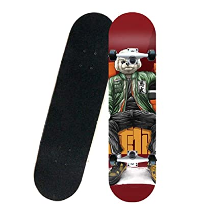 Xinxin Tide Brand Professional Skateboard Four-Wheel Skateboard for Men and Women Beginners (Color : Red) : Sports & Outdoors