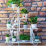 ZPMZ- Flower Rack - Flower Shelf - Pergola - Metal - Plant Rack - Flower Pot Rack - Multi-Functional Metal Shelf - Indoor Decorations - Outdoor Decorations Plants Display Rack