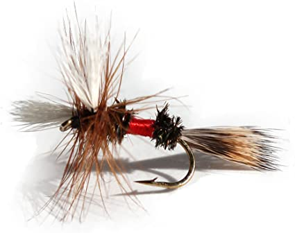 Flies Direct Elk Hare Caddis Olive Assortment Trout Fishing Flies 1-Dozen