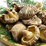 Dried shiitake mushrooms shiitake mushrooms Kyushu natural dried vegetables dried shiitake mushrooms powdery mildew 120g