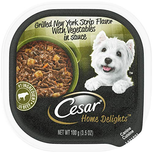 CESAR HOME DELIGHTS Wet Dog Food Grilled New York Strip Flavor With Vegetables in Sauce, (24) 3.5 oz. Trays