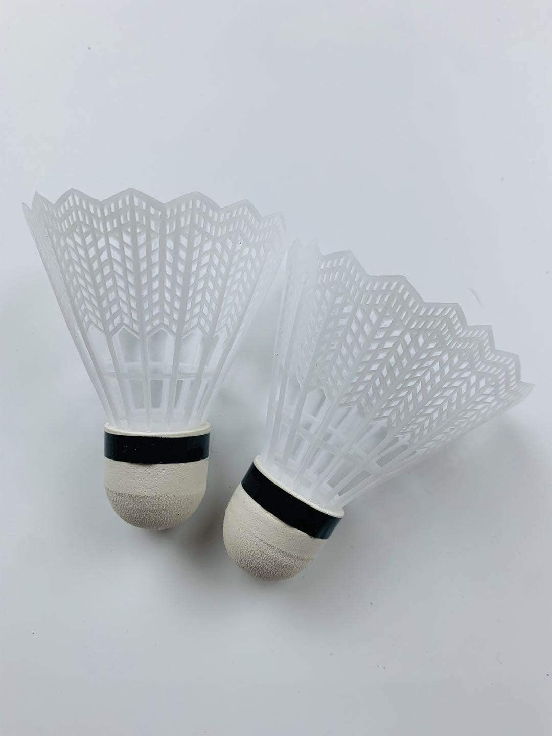Racquet Sports Sets Badminton Complete Sets, Badminton Sets, Portable Outdoor Classic Racquet Sports Badminton Combo Set Badminton Net System, Fun Lawn or Beach Game Sets for The Whole Family : Sports & Outdoors