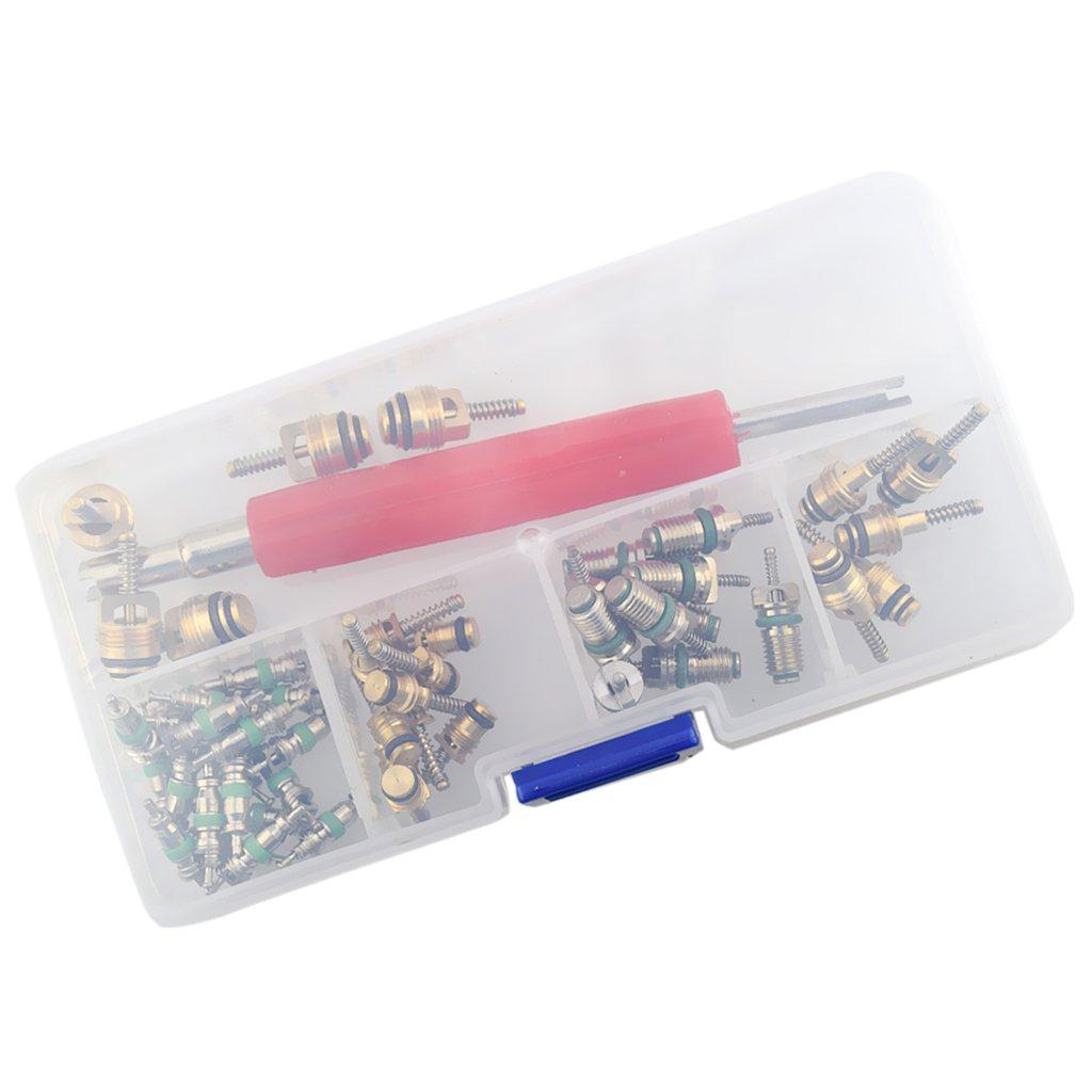 MagiDeal 51 Pezzi Assortimento a/c Shrader Valvola Core & Tool R134a R12 Kit Valvole HVAC