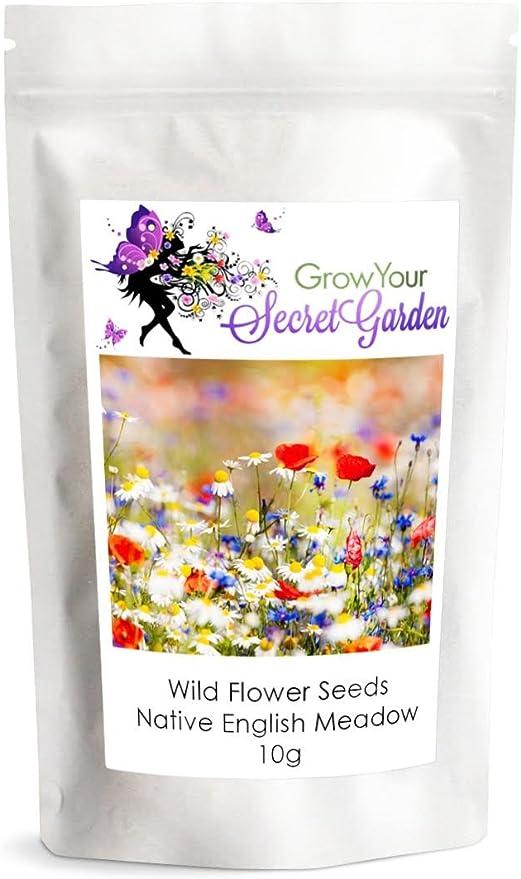 Semillas de flores silvestres, Prado Mix, sólo las flores - 10 g-granel, Ganga: Amazon.es: Jardín