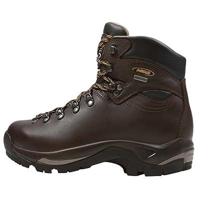 Women's Boots/asolo chestnut gv tps 520 evo im1u26b5