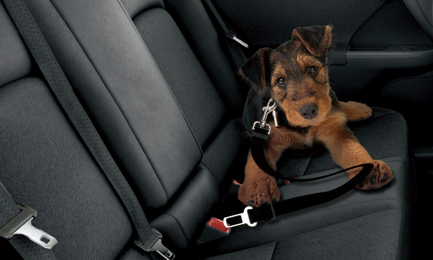 Durable Universal Car Vehicle Lead Seat Belt Clip Panzo Products Adjustable Dog Seat Belt Pet Car Safety Nylon Harness Restraint