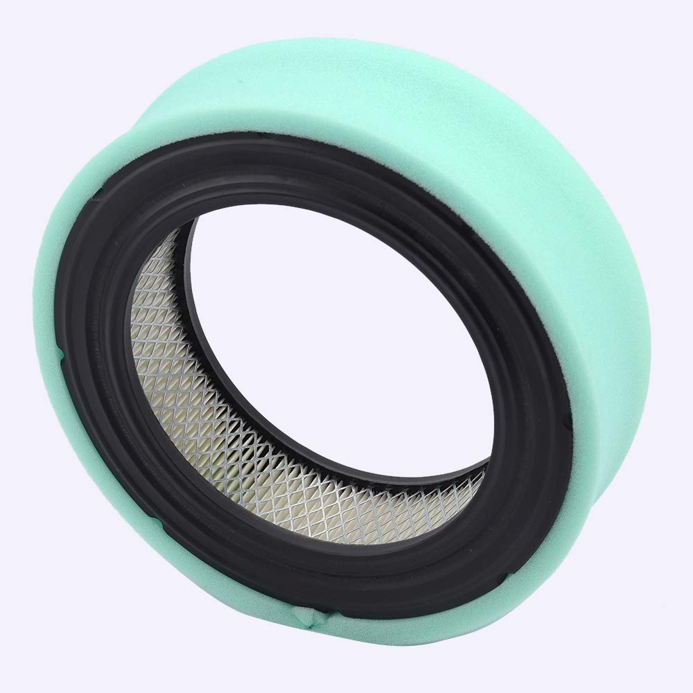 Wellsking 692519 Air Filter with Oil Fuel Filter for Briggs /& Stratton V-Twin Vanguard Engines 541477 542477 543477 356477 358777 380447 380777 381447