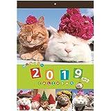 学研ステイフル かご猫 2019年 カレンダー 壁掛け BM12094