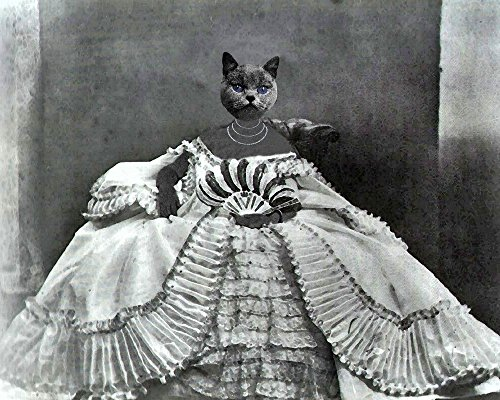 ROCOCO Russian Blue CAT WOMAN kitty lady portrait Victorian altered anthro art (Victorian Woman Portrait)