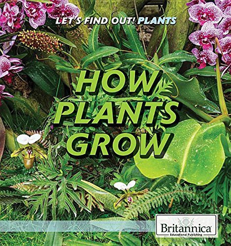 How Plants Grow (Let's Find Out! Plants)